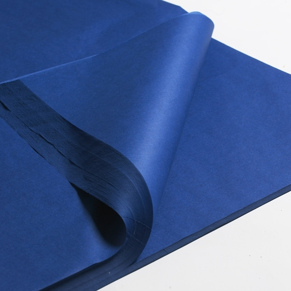 "100x Blue Mailing Bags 6.5x9"" - 165x230mm +Lip - Click Image to Close"